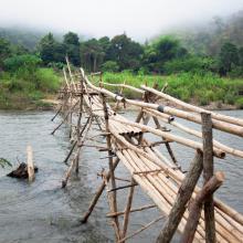 Puente de bambú