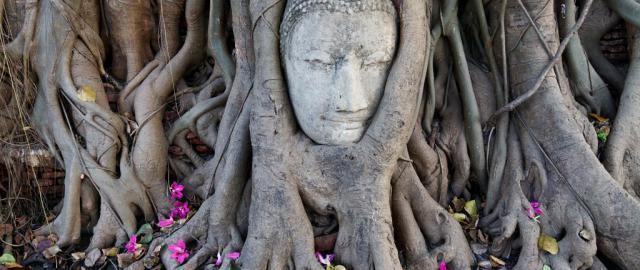 Wat Mahathat Ayutthaya